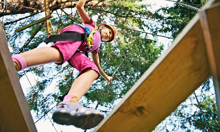 Treehoppers - Central Pasco: An Aerial Adventure for One, Two, or Four at Treehoppers (Up to 44% Off)
