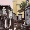 Up to 60% Off Two-Hour Historic Cemetery or Ghost Walking Tour