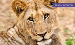 Up to 40% Off at Wildlife Safari   at Wildlife Safari, plus 6.0% Cash Back from Ebates.
