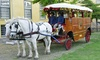 Cape Town Carriage Company - Cape Town: Historical CBD Ride from R300 with Cape Town Carriage Company (Up to 60% Off)
