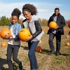 Up to 42% Off at McGrath Brothers Great Pacific Pumpkins