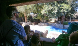 Emirates Park Zoo & Resort: Zoo Entrance, Two Shows (Elephant and Sea Lion), Animal Feeding and More for Up to Four at Emirates Park Zoo and Resort