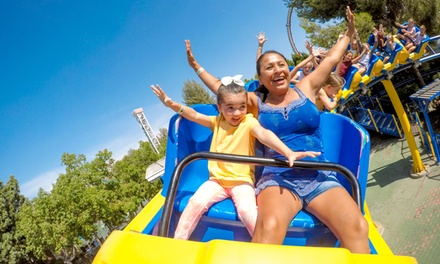 $15 for Duke's Duo Pass at Castle Park ($19.99 Value)