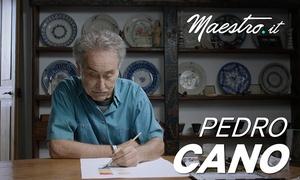 Lezioni di acquerello con Pedro Cano - Maestro.it: Lezioni di acquerello con Pedro Cano e live experience online offerte da Maestro.it(sconto 64%)