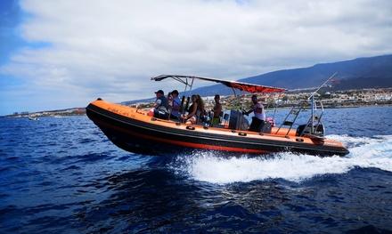 Paseo en barco de 60 minutos con avistamiento de cetáceos a elegir entre 2 opciones desde 29,95€ en Pis Pas Los Gigantes