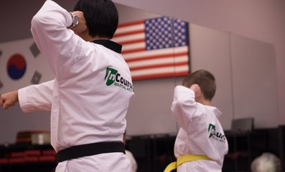 Five- or Ten-Class Taekwondo Pass, or One-Month Unlimited Pass at InCourage Martial Arts (Up to 85% Off)