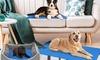 Tapis de refroidissement pour chiens