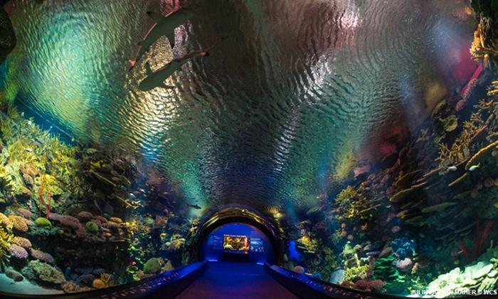 New York Aquarium From 17 95