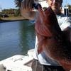 41% Off Fishing