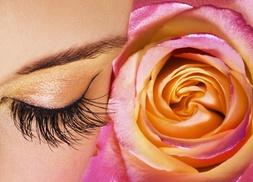 Studio Luxe Salon...: $10 Off $20 Worth of Waxing - Eyebrow / Face