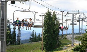 Up to 45% Off Scenic Chairlift Ride at Mt. Hood Meadows Resort at Mt. Hood Meadows Resort, plus 6.0% Cash Back from Ebates.