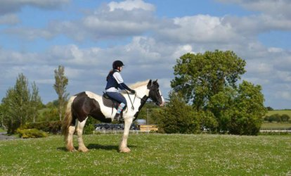 90-Minute Horse Riding Session for One, Two or a Family of Four at Claremorris Equestrian Centre