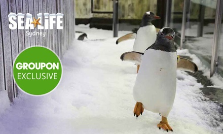 SEA LIFE Sydney Aquarium Entry with Meal Package Child $25 or Adult $35 , Darling Harbour Up to $55.95 Value