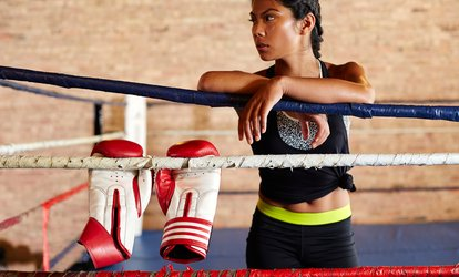 image for One or Three Months of Unlimited Women's <strong>Kickboxing</strong> Classes at Platinum Mixed Martial Arts (Up to 67% Off)