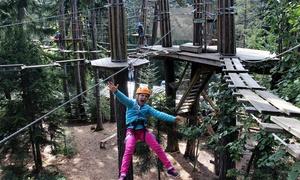 Acro'Aventures Reignier: 2 entrées pour le parcours aventure enfant, junior ou grand parcours dès 15 €à l'Acro'Aventures Reignier