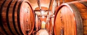 Made In Piedmont Wines: Dégustation de vins de 6 à 10 personnesà Lede à 49,99 €