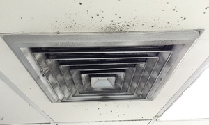Lone Star Pro Services: Up to 80% Off air duct and dryer vent cleaning at Lone Star Pro Services