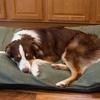 Suede-Top Throw Pillow Pet Bed