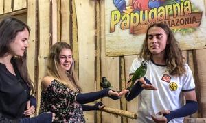Papugarnia Amazonia: Od 17,99 zł: bilet wstępu do Papugarni Amazonia na Rynku Głównym (do -44%)