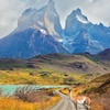 ✈ 8-Day Chile Vacation w/ Air and Breakfast from Great Value Vacations