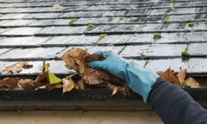 EXT-Wash: From $99 for a Gutter Flush for a 2 Bedroom Home with EXT-Wash (From $198 Value)