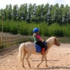 $120 Off Four Private Horse Back Riding Lessons