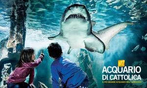 Ingressi all'Acquario di Cattolica: Acquario di Cattolica: ingresso a tutti e 4 i percorsi dell'acquario e al percorso interattivo (sconto 20%)