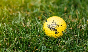 Olympic Golf: Nauka gry w golfa dla 2 osób z instruktorem i więcej od 66,99 zł w Olympic Golf Club (do -35%)