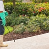 42% Off from Discount Window Pro Cleaning