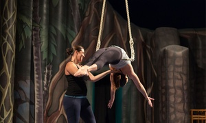 Ashton Rodriguez Training Centre: $55 for a Choice of Five-Week Children's Circus Skills Classes at Ashton Rodriguez Training Centre (Up to $110 Value)