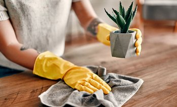 Up to 56% Off on House Cleaning at Hygieia  Cleaning Services
