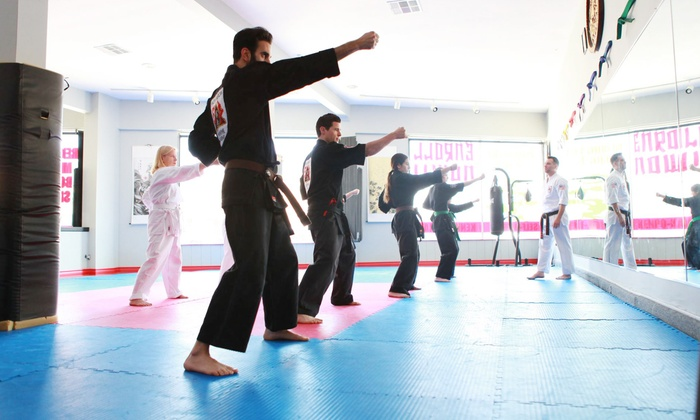 Shaolin American Self Defense Academy - Valley Village: Two or Four Weeks of Group Classes with Private Lessons at Shaolin American Self Defense Academy (Up to 86% Off)