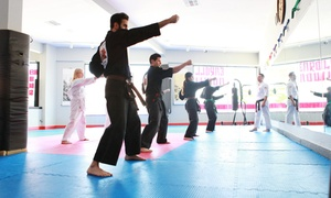 Shaolin American Self Defense Academy: Two or Four Weeks of Group Classes with Private Lessons at Shaolin American Self Defense Academy (Up to 86% Off)