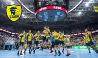 2 Tickets für die Rhein-Neckar Löwen in der HBL gegen TVB Stuttgart oder Füchse Berlin in der SAP Arena (50% sparen)