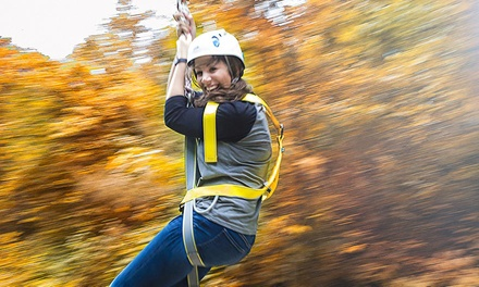 9-Zipline Zip Tour Plus S'mores for One or Two at Adventureworks (Up to 46% Off)