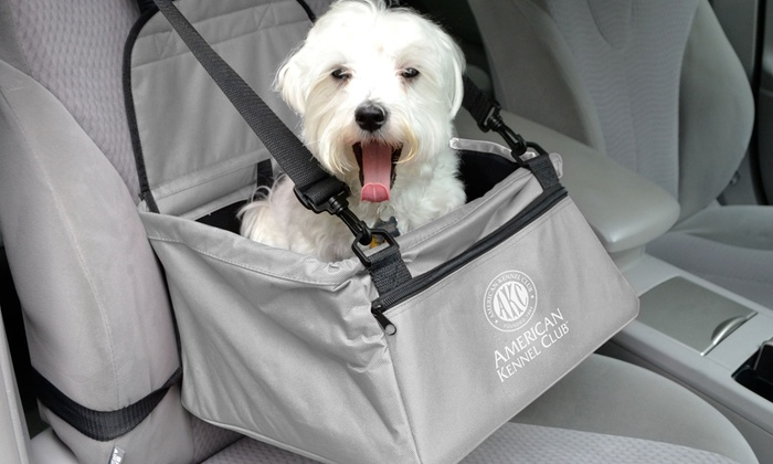 Pleasing Up To 70 Off On Akc Car Booster Seat Groupon Goods Alphanode Cool Chair Designs And Ideas Alphanodeonline