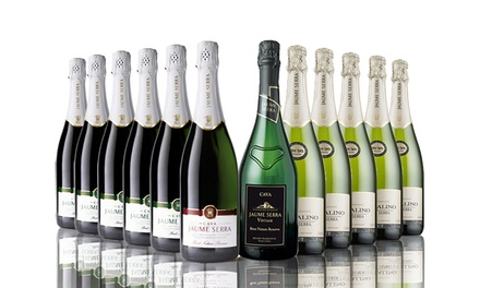 12-Bottle Case of Mixed Cava for £54.99 With Free delivery(64% Off)