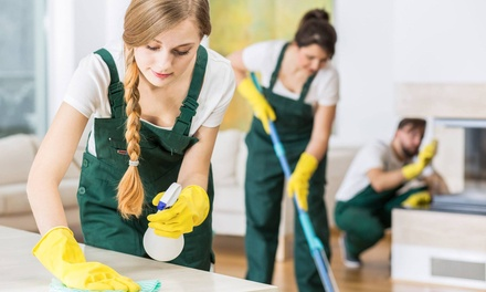 Housecleaning squeaky clean squad cleaning services groupon - Limpieza de casas groupon ...