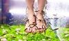 Ann Vandamme  - Brugge: Massage des pieds & fish pédicure à partir de 14,99 € chez institut Ann Vandamme
