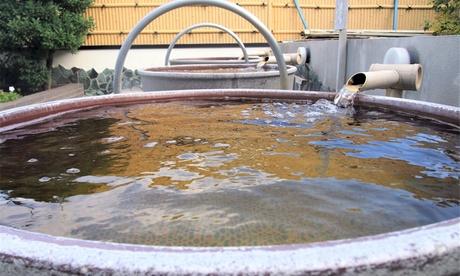天然温泉ふるさとの湯