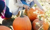 Chris' Farm Stand - Bradford: One-Day Admission to the Pumpkin Festival for Two, Four, or Six at Chris' Farm Stand (Up to 56% Off)
