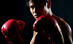Aml Boxing: $69 for $125 Groupon — AML Boxing