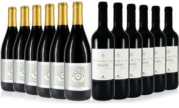 Case of 12 Spanish Red Wines