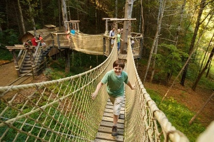 Discover Foxfire & Swinging Bridge Pass for One, Two, or Four at Foxfire Mountain Adventure Park (Up to 43% Off)