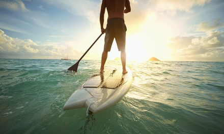One-Hour Stand-Up Paddleboard Hire for One ($15) or Two People ($29) at ESS Boardstore (Up to $50 Value)