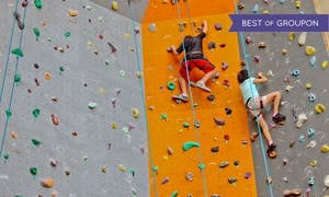 Dorell Sports: One-Hour Climbing Session for Adult or Child at Dorell Sports, Choice of Two Locations (Up to 67% Off)