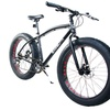 Mammoth Fat Tire Bicycle