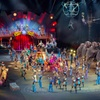 Ringling Bros. and Barnum & Bailey – Up to 63% Off