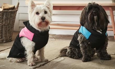 Bunty Dog Puffer Jacket