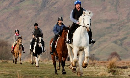 Two-Hour Horse Riding, Hack Experience for One or Two at Milndavie Farm (Up to 41% Off)